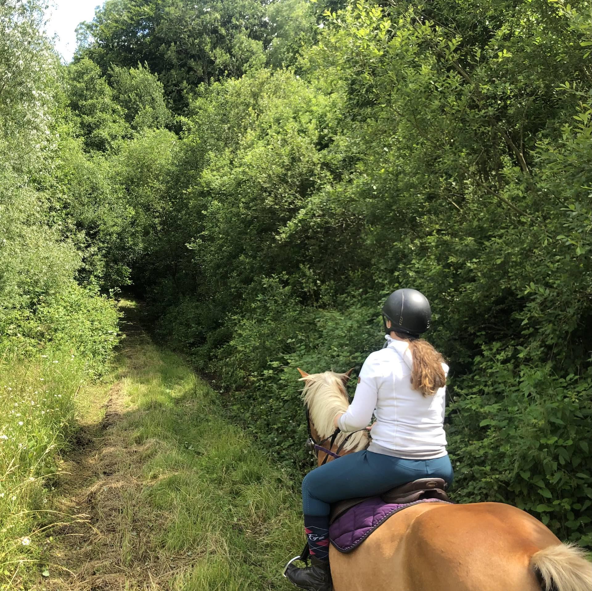 Balade_a_cheval